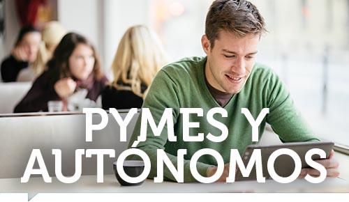 Videoconferencia ZOOM Pymes y Autónomos